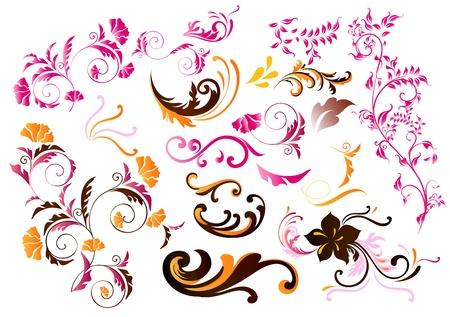 Decorative color Illustration