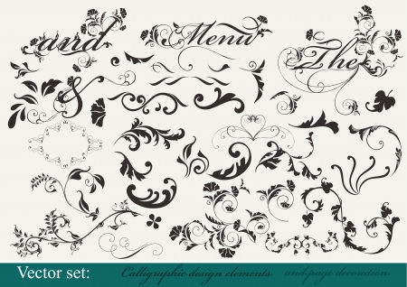 Decorative elements Stock Vector - 15426183