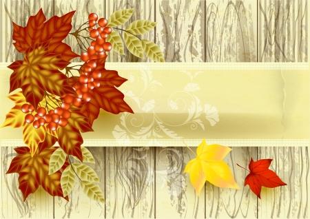 Autumn vector Stock Vector - 15552352