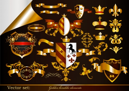 heraldic shield: Luxury heraldic elements for design