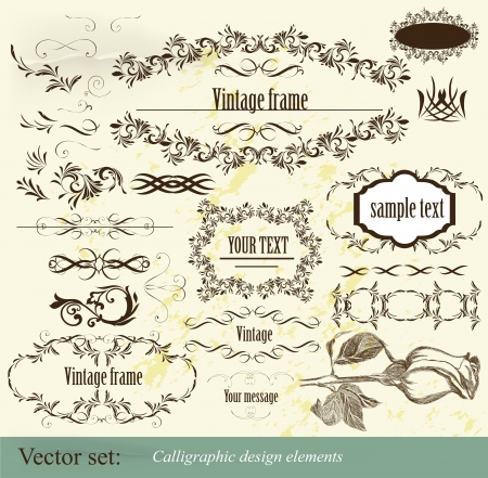 Decorative elements for elegant design  Calligraphic vector  Stock Vector - 15820402