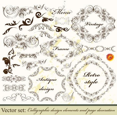 Decorative elements for elegant design  Calligraphic Stock Vector - 16162687