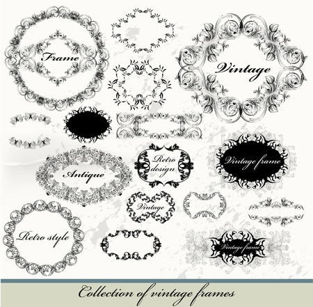Decorative elements for elegant design  Calligraphic  Vector