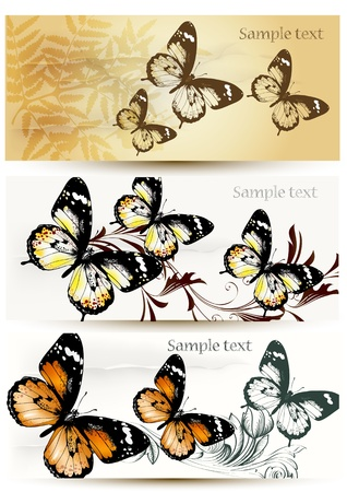 Set of floral  cards  with butterflies for  your design Stock Vector - 16162725