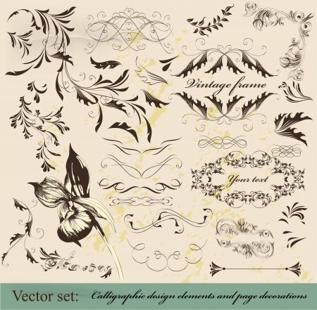 Decorative elements for elegant design Stock Vector - 16162727