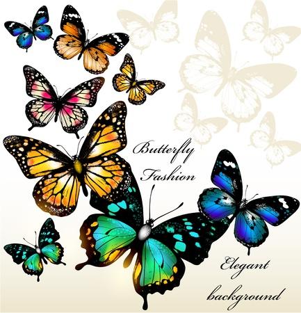 papillon dessin: illustration avec des papillons