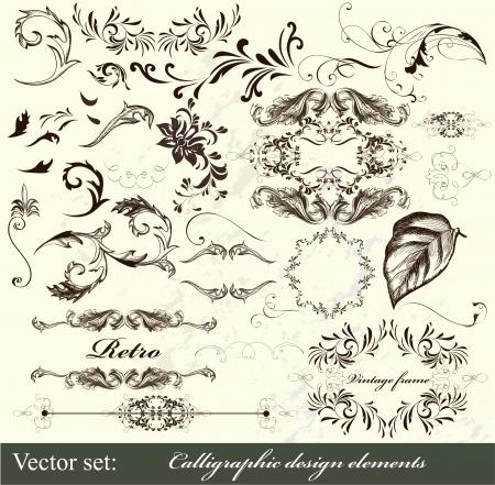 Decorative elements for elegant design  Calligraphic vector Stock Vector - 16483699