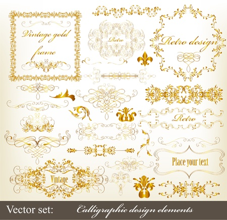 Decorative  golden elements for elegant design  Calligraphic vector  Vector