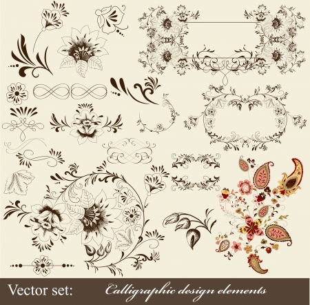 Decorative elements for elegant design  Calligraphic Stock Vector - 16548333
