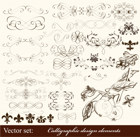 Calligraphic Stock Vector - 16548322