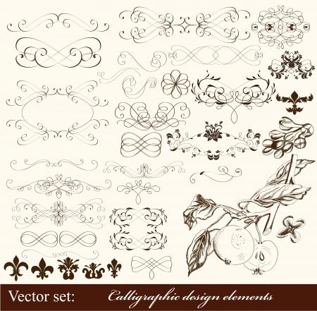 swirly: Calligraphic