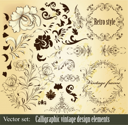 Decorative elements for elegant design  Calligraphic vector  Stock Vector - 16766477