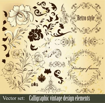 Decorative elements for elegant design  Calligraphic vector Stock Vector - 16766477