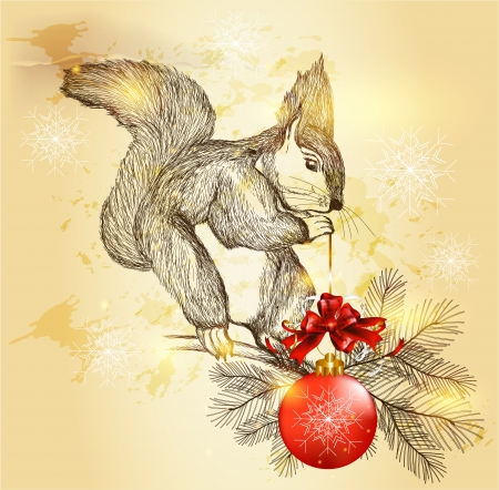 red squirrel: Christmas  Illustration