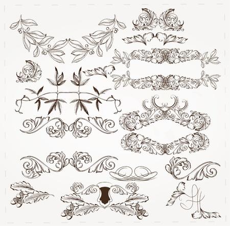 Decorative elements for elegant design  Calligraphic Stock Vector - 16986954