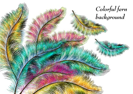 Colorful ferns for your design Vector