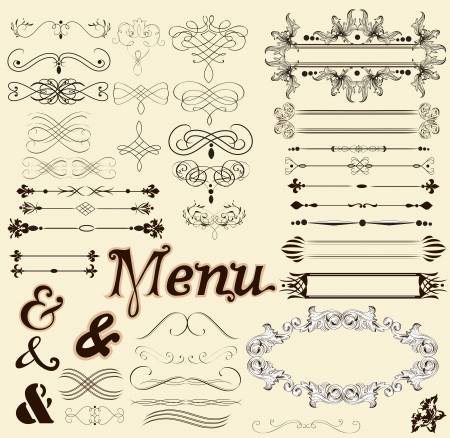 set of calligraphic elements for your design Vector