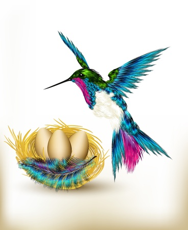 hummingbird: Hummingbird with nest