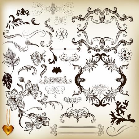 Calligraphic illustration Stock Vector - 17342020