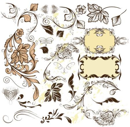 Decorative elements for elegant design  Calligraphic  Stock Vector - 17474985