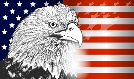 National symbol of USA flag and eagle