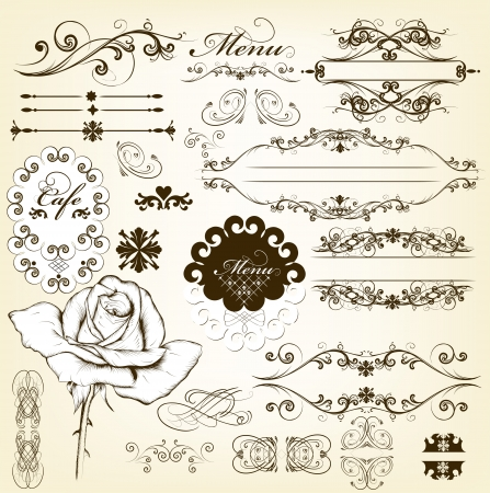 Decorative elements for elegant design  Calligraphic vector  Vector