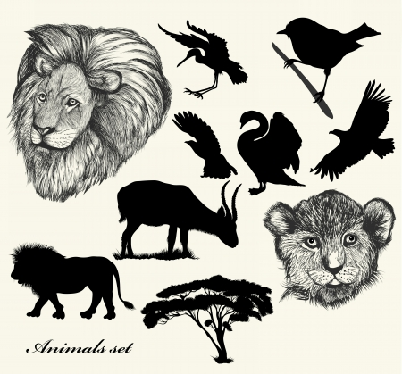 Savanna animals for deign Vector