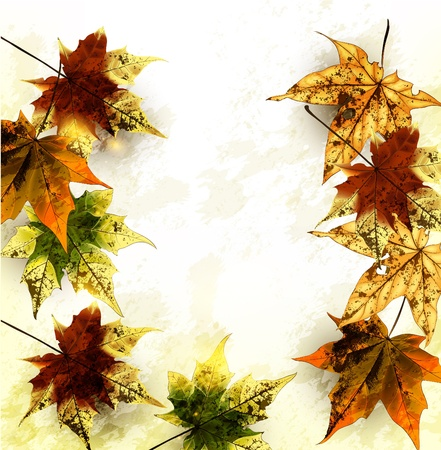 Autumn vector  Stock Vector - 17775172