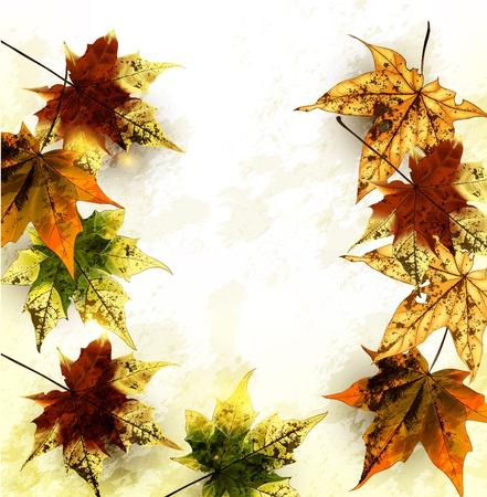 Autumn vector Stock Vector - 17775172
