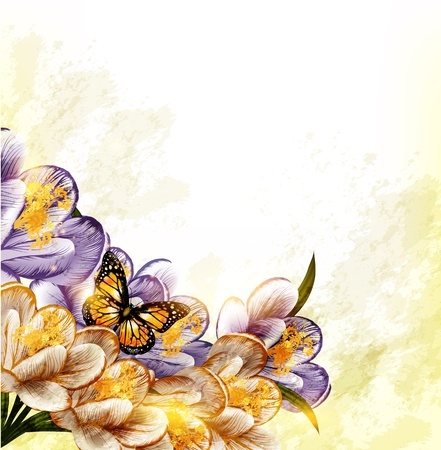 butterfly border: Floral vector Illustration