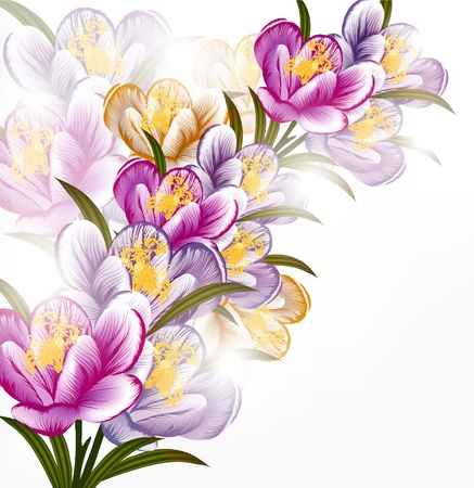 Floral vector Vector