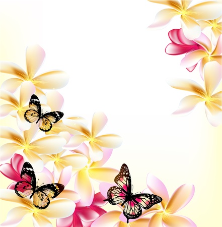 ornate swirls: Pink gardenia flowers and butterflies on white background for design Illustration
