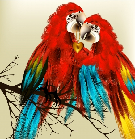 Couple of parrot  with golden heart symbol of love Vector