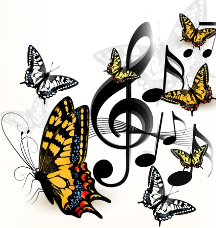 Vector illustration with butterflies  for design  Vector