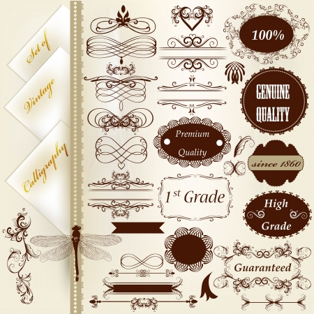 Set of vector labels or calligraphic design elements Stock Vector - 18707599