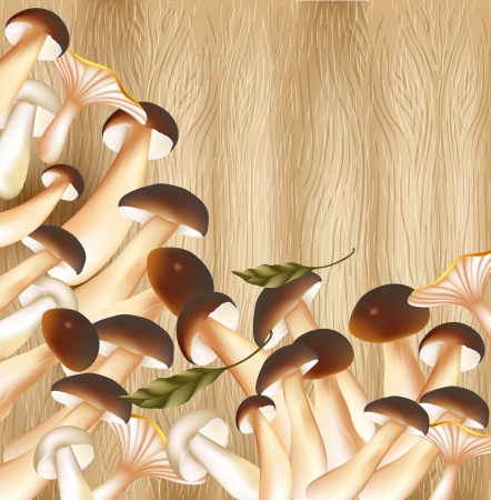 forest mushrooms on wooden background Vector