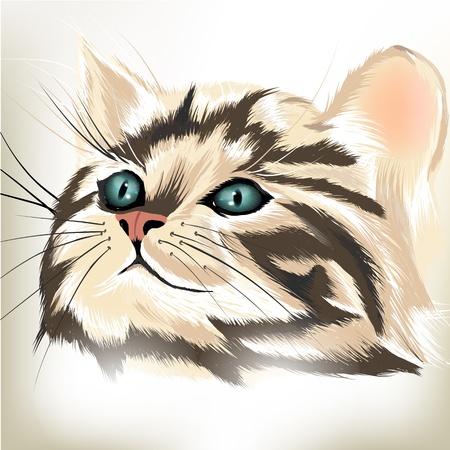 Retrato lindo del gato del vector en el fondo blanco