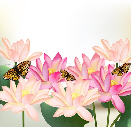 Realistic vector pink lotus flowers on white background for design Vector