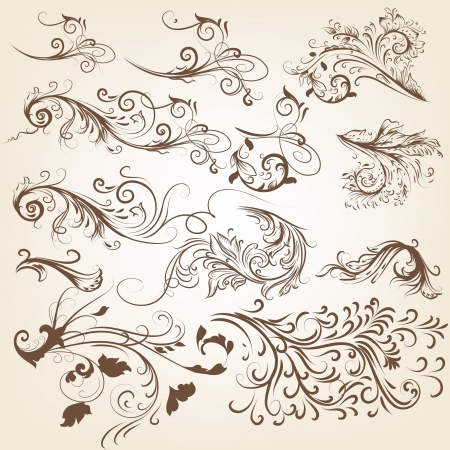ornaments vector: Vector set of swirl vintage ornaments for design