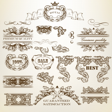 ornamental scroll: set of calligraphic elements for design  Calligraphic