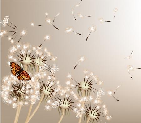 Cute vector achtergrond met witte vector paardebloemen voor design