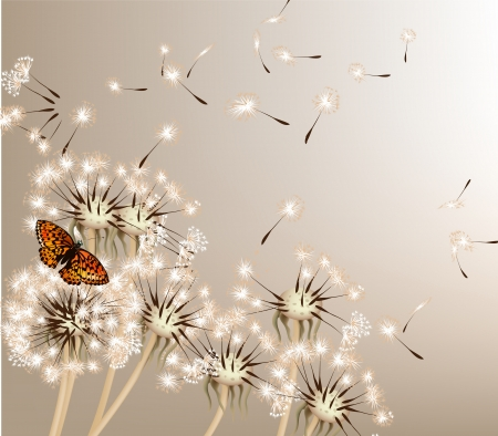 Cute vector background with white vector dandelions for design Ilustrace