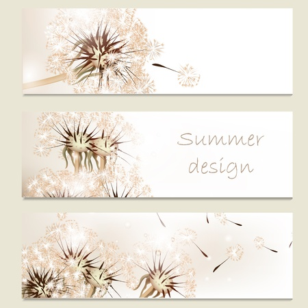 Set of floral brochures with dandelions for your design Vector