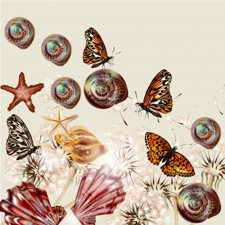 land shell: Vector background with dandelions flowers, sea shells for summer design