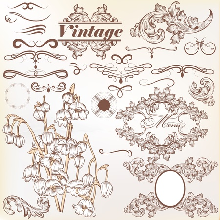 set of swirl vintage ornaments for design Vector