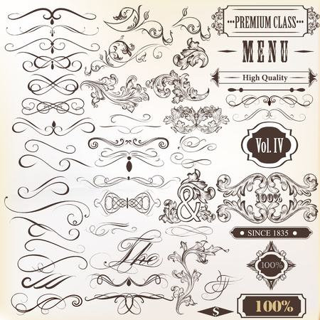 page decoration: Vector set of calligraphic elements for design  Calligraphic vector