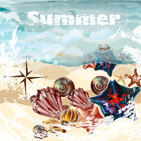 land shell: Vector background with detailed shells on a sand for summer design Illustration