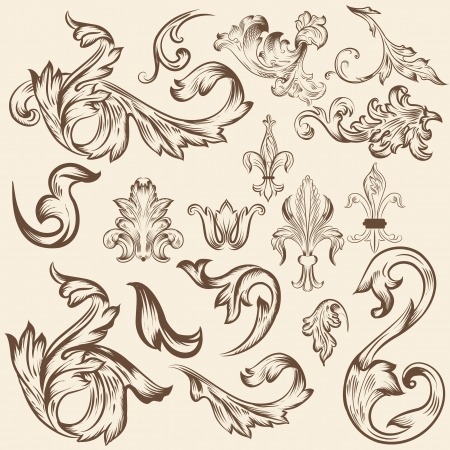 Vector set of calligraphic elements for design. Calligraphic vector Stock Vector - 20917735
