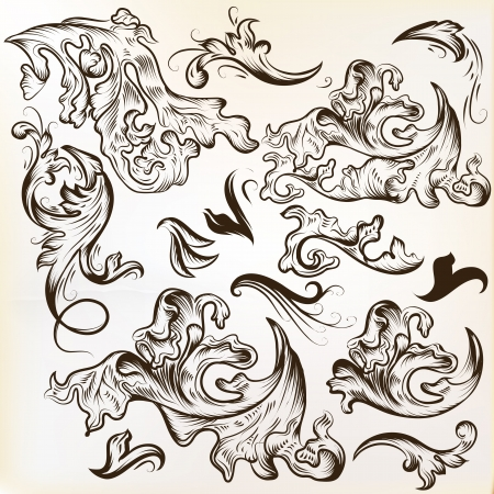 Vector set of calligraphic elements for design. Calligraphic vector Vector