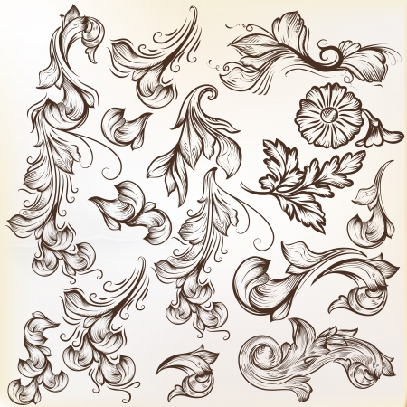 set of calligraphic elements for design Stock Vector - 21130692